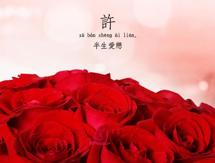 一往情深——快送鲜花网|情人节网上订玫瑰花|520鲜花预订|521鲜花快送|节日送花