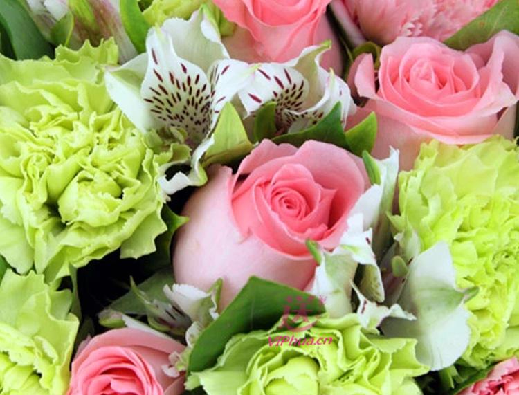温暖的依赖—快送鲜花网|母亲节花束|慰问病人订花|异地送鲜花|送