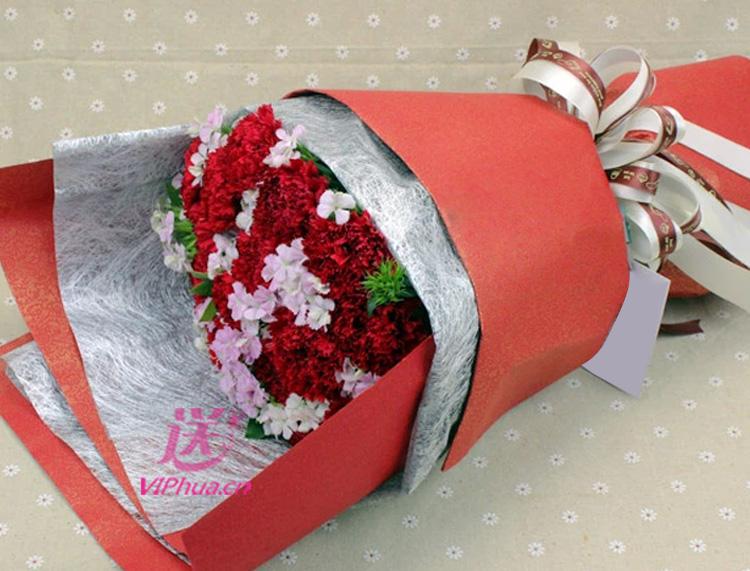 温暖的依赖—快送鲜花网 母亲节花束 邮政订花 异地送鲜花 送康乃馨