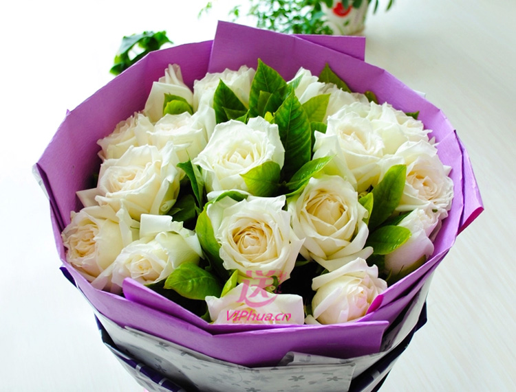 一如往昔—快送鲜花网|北京鲜花快递|鲜花快递公司|上海鲜花快递|深圳鲜花快递|重庆鲜花配送