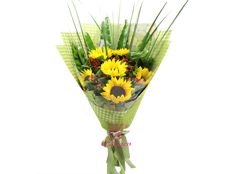 笑颜——快送鲜花网|父亲节鲜花|送给长辈礼物|石家庄同城送花|生日鲜花预定|网上订购鲜花
