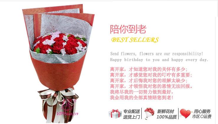 陪你到老—快送鲜花网 母亲节花束 邮政订花 异地送鲜花 送康乃馨