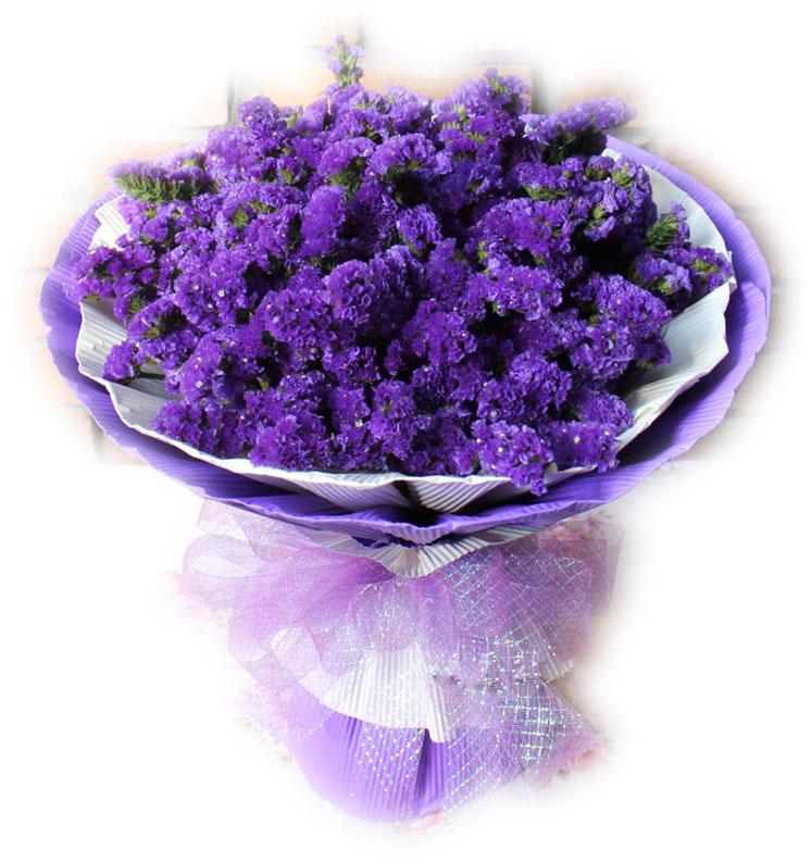 守望未来—快送鲜花网|北京鲜花速递|福州订花|勿忘我鲜花|情人节网上订鲜花