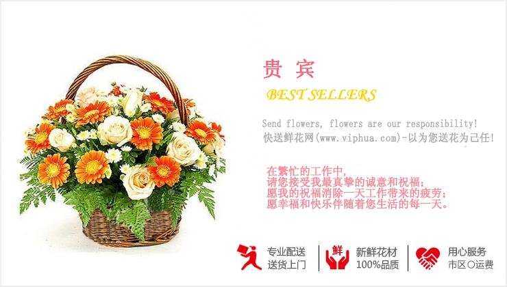 贵宾—快送鲜花网|鲜花果篮|花篮订购|异地送花篮|慰问花篮|网上送鲜花花篮