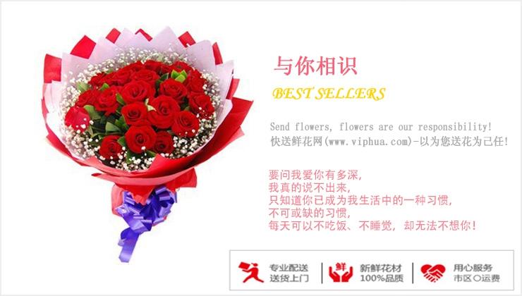 与你相识—快送鲜花网 情人节鲜花速递 异地订花 同城快递鲜花 网上订鲜花 节日鲜花