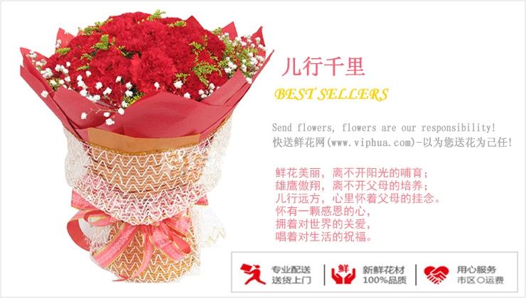 儿行千里—快送鲜花网|母亲节鲜花速递|异地订花|同城快递鲜花|网上订鲜花|节日鲜花
