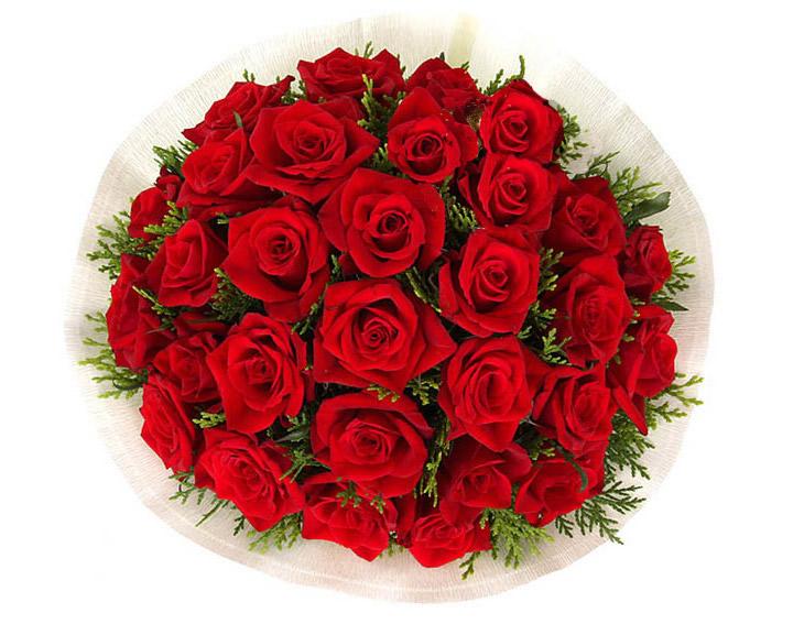 千言万语—快送鲜花网|情人节鲜花速递|异地订花|同城快递鲜花|网上订鲜花|节日鲜花