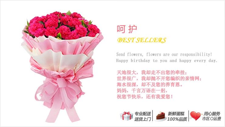 呵护—快送鲜花网|母亲节花束|母亲节订花|异地送鲜花|送康乃馨