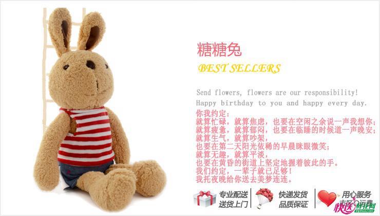 泰迪熊笨笨—快送鲜花网|毛绒玩具|异地送生日礼物|网上买卡通娃娃|女友生日送什么好