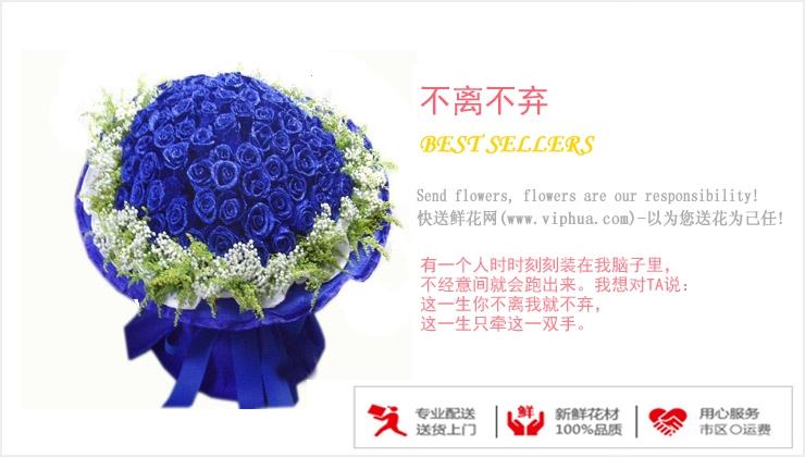 不离不弃—快送鲜花网 市鲜花店 预定鲜花 网上购买节日鲜花网站