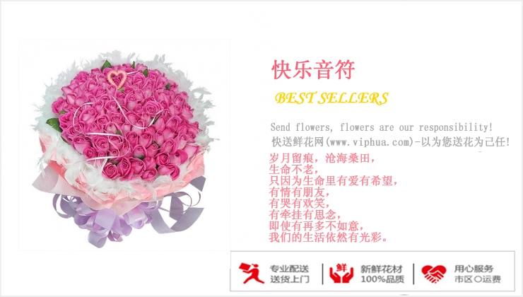快乐音符—快送鲜花网|石家庄鲜花速递|异地订花|市鲜花店|网上订鲜花|妇女节鲜花预定