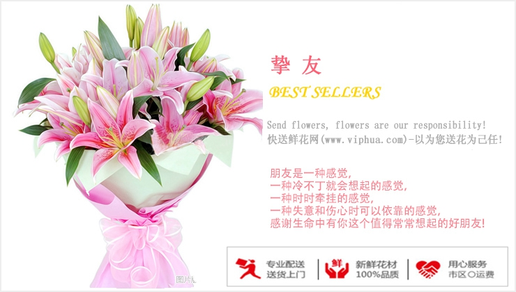 挚友—快送鲜花网|大连市订花|送外地鲜花|如何在网上订购鲜花