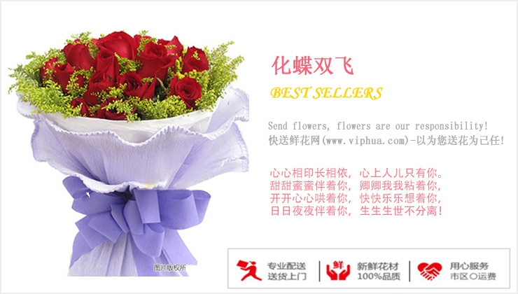 化蝶双飞—快送鲜花网 南京订鲜花 网上鲜花店 送花订花 送花上门服务