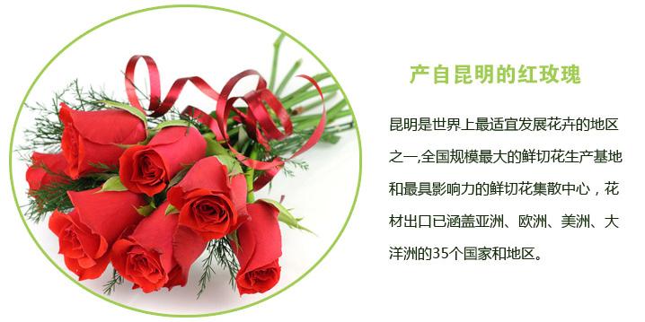快送鲜花网(www.viphua.com)玫瑰花